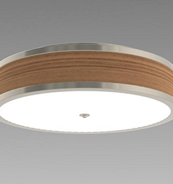 CAMMAN LIGHTING - Surface Mount Image